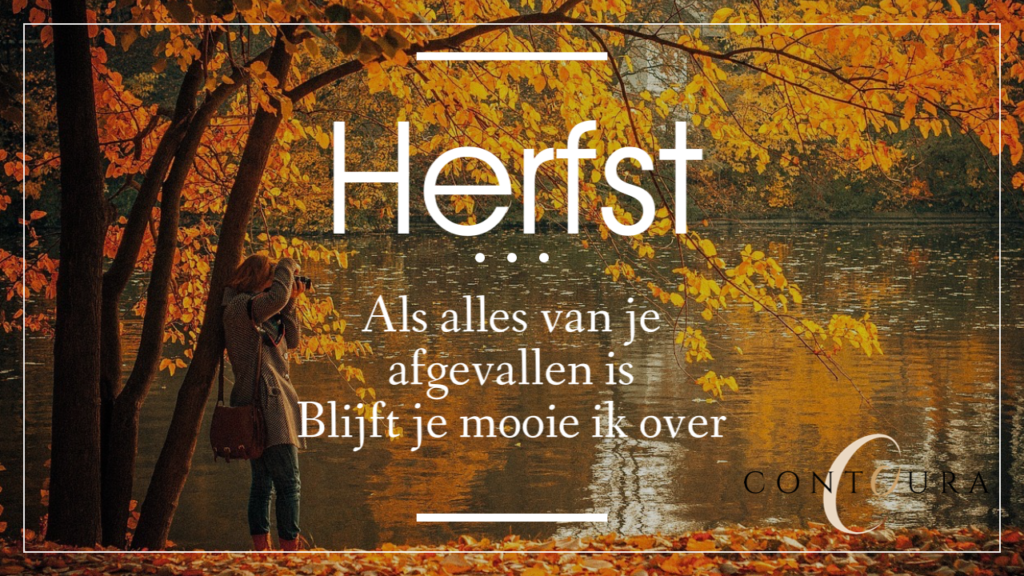 Herfst Contoura